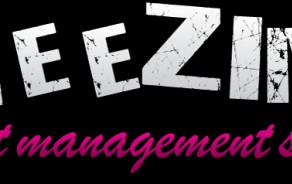 Logo: Freezing CMS